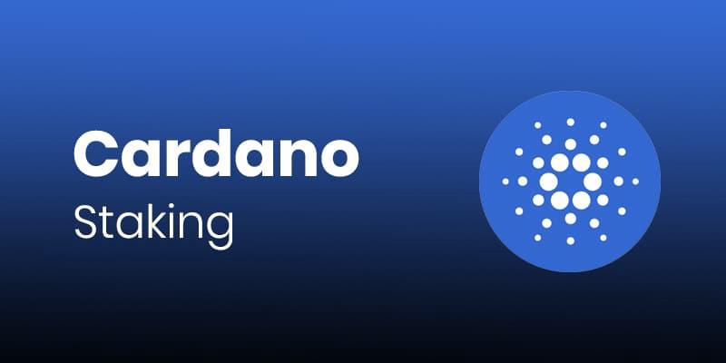 Cardano Staking: Practical Information